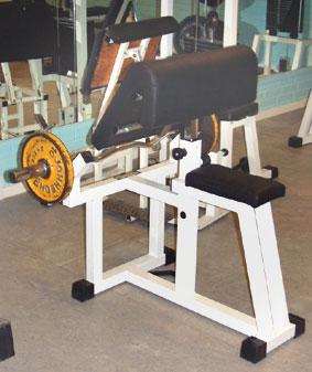 bicepssiddendegl